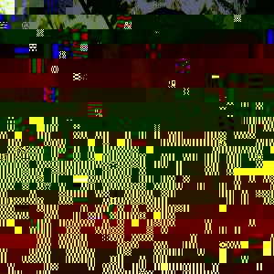 Dr. José de Jesús Adolfo Tortolero Langarica